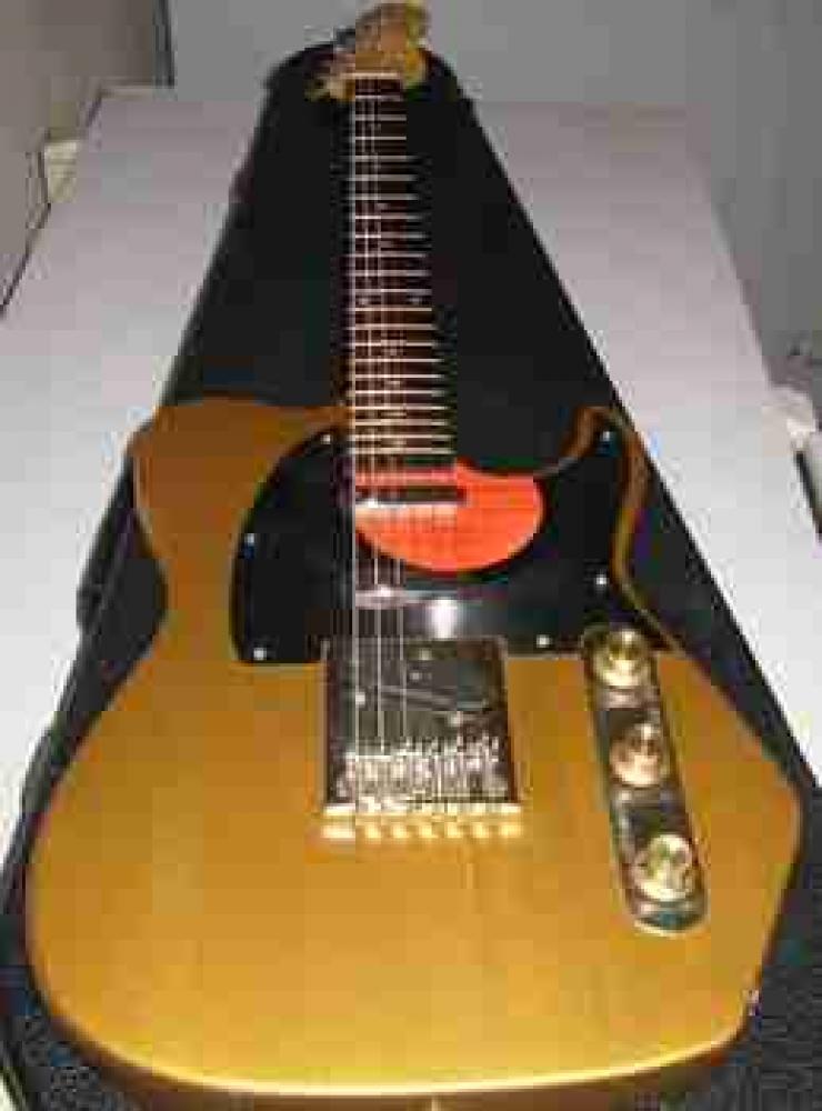 NML, una chitarra con carattere!
