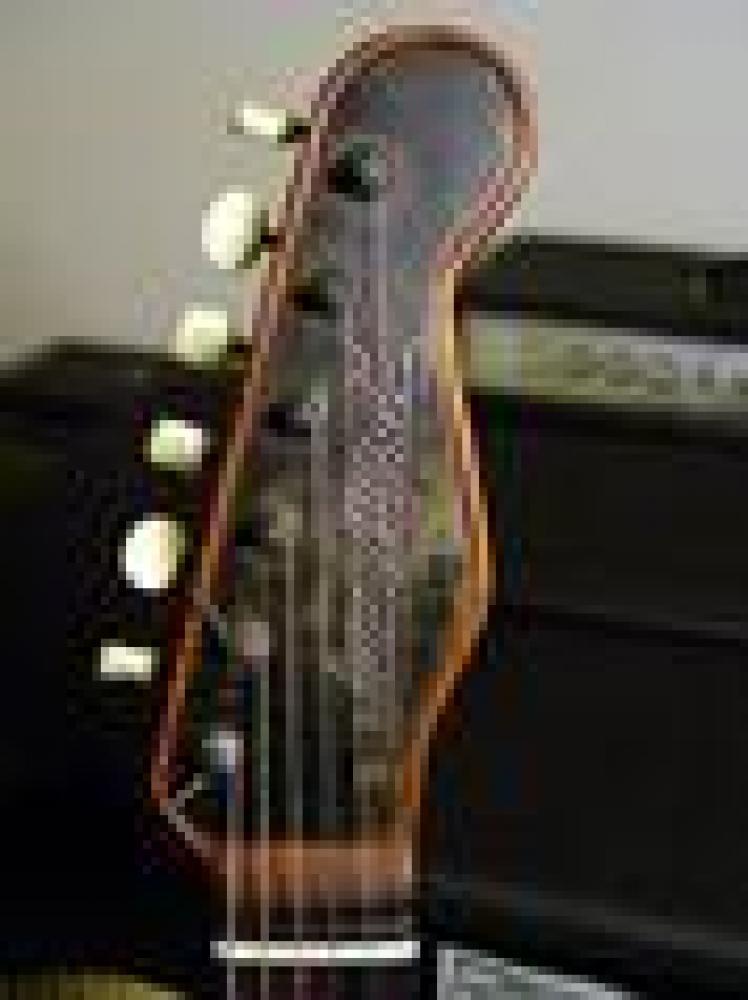 Trussart Steelcaster, heavy metal mojo