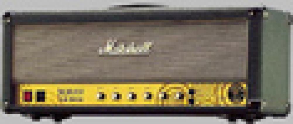 Marshall Jcm 800ZW Zakk Wylde Limited Edition