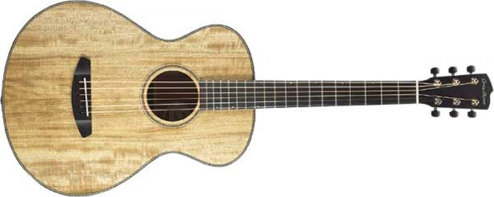 Breedlove riscrive la Parlor con Concertina