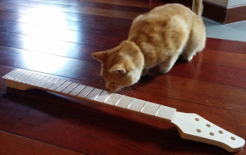 Speedcaster: (non) l'ennesima chitarra fatta in casa