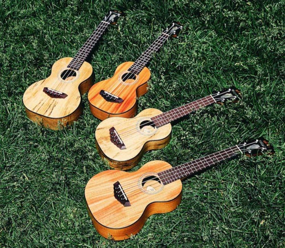 D'Angelico inaugura travel guitar e ukulele