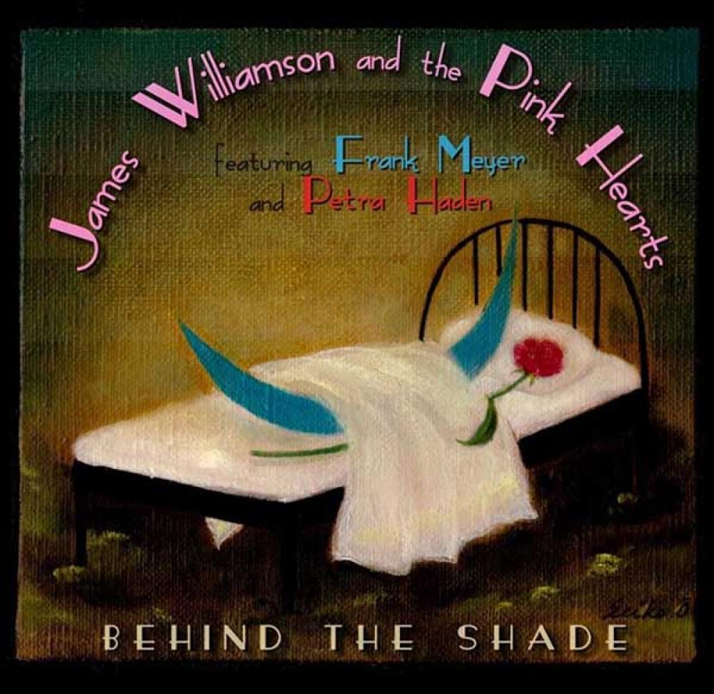 L'ex-Stooges James Williamson al lavoro su album solista