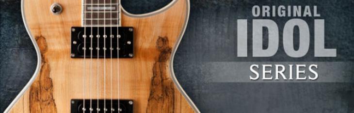 Washburn Idol Spalted Maple