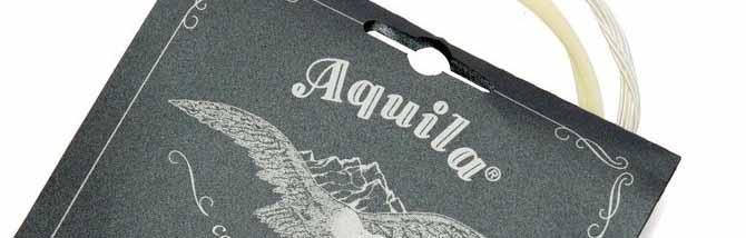 Aquila Perla: il dolce suono di una corda progressista